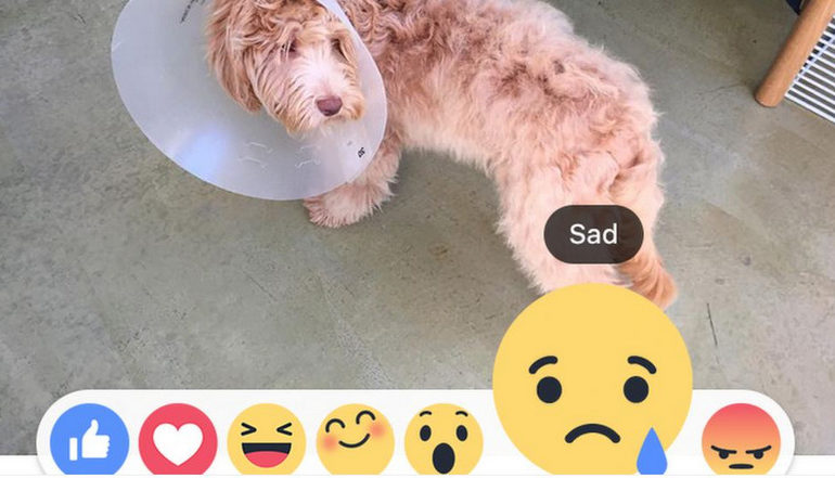 'Reaksi' Facebook Bisa Lebih Diekspresikan Lewat Emoji