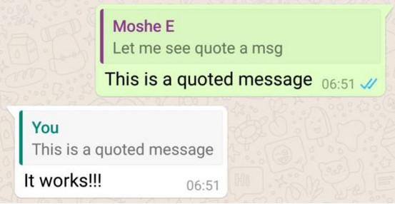 WhatsApp Versi Terbaru Bawa Fitur Kutip Pesan (Quote)