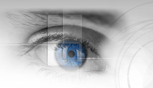 Modul IRIS CAM Dari Samsung Terlihat di Dokumen Impor Resmi