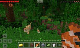 Baru Di Update, Download Minecraft PE 0.15.6 Versi Baru Sekarang!