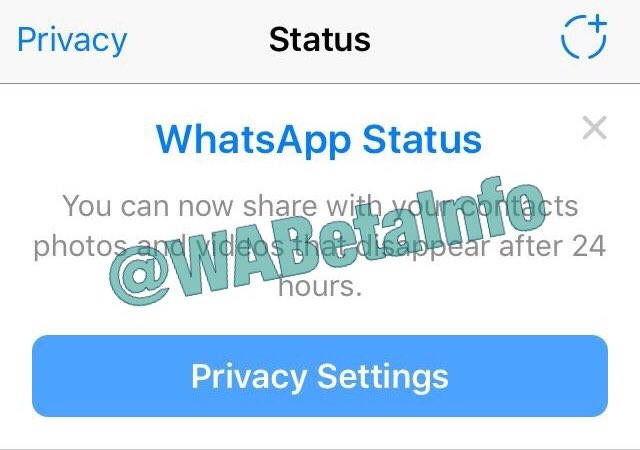 Seperti Instagram, WhatsApp Pun Segera Bisa Kirim Stories